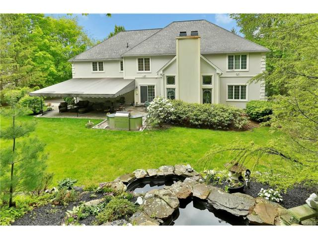 3 Pond Hollow Court, Pleasantville, NY 10570 (MLS #4739912) :: William Raveis Legends Realty Group
