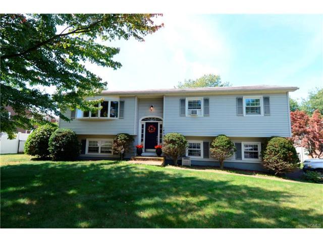 145 Purple Martin Road, Montgomery, NY 12549 (MLS #4739999) :: William Raveis Baer & McIntosh