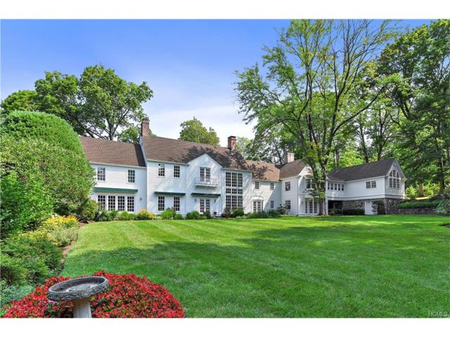 100 Scarborough Station Road, Briarcliff Manor, NY 10510 (MLS #4740014) :: William Raveis Legends Realty Group