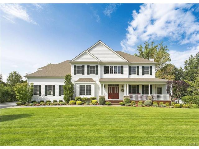 12 Old Farm Rd South, Pleasantville, NY 10570 (MLS #4740225) :: William Raveis Legends Realty Group