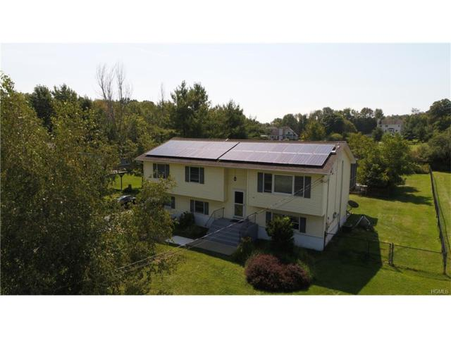 28 Wood Road, Chester, NY 10918 (MLS #4740316) :: William Raveis Baer & McIntosh