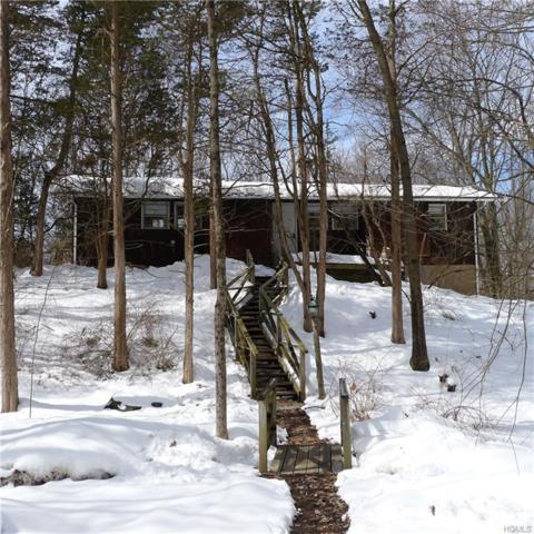 26 Story Hill Road, Chester, NY 10918 (MLS #4740403) :: William Raveis Baer & McIntosh