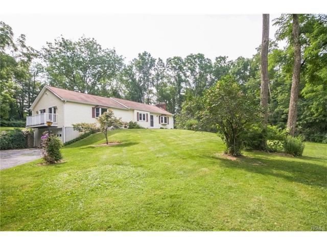 284 N Mabbettsville Road, Millbrook, NY 12545 (MLS #4740726) :: Mark Boyland Real Estate Team