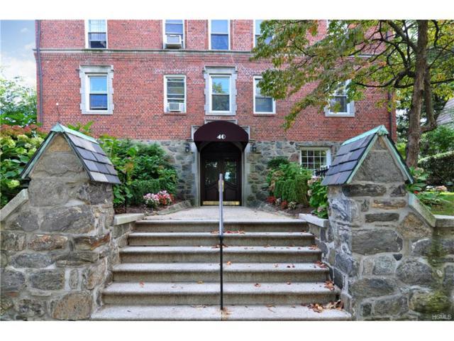 40 E Birch Street 1A, Mount Vernon, NY 10552 (MLS #4740798) :: Mark Boyland Real Estate Team