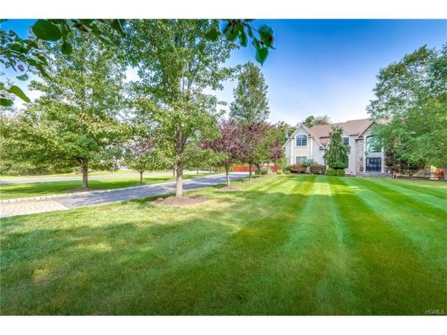 6 Stone Meadow, Airmont, NY 10901 (MLS #4740922) :: William Raveis Baer & McIntosh