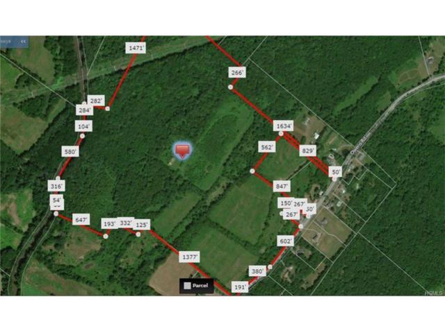 111 Owens Road, Goshen, NY 10924 (MLS #4740958) :: Mark Boyland Real Estate Team