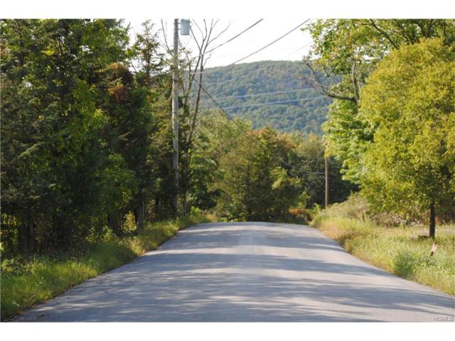 10 Reilly Road, Chester, NY 10918 (MLS #4740983) :: William Raveis Baer & McIntosh