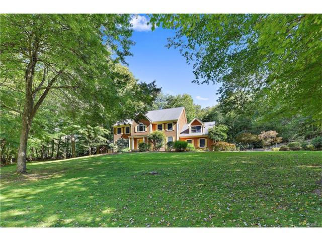 14 Cornel Drive, Goldens Bridge, NY 10526 (MLS #4741027) :: Mark Boyland Real Estate Team