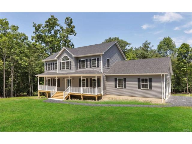 6 Anastasia Court, Blooming Grove, NY 10914 (MLS #4741201) :: William Raveis Baer & McIntosh