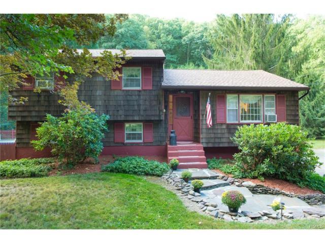 768 Route 343, Dover Plains, NY 12522 (MLS #4741440) :: Mark Boyland Real Estate Team