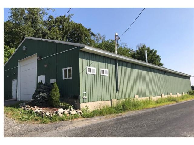 153 Onion Avenue, New Hampton, NY 10958 (MLS #4741454) :: Mark Boyland Real Estate Team