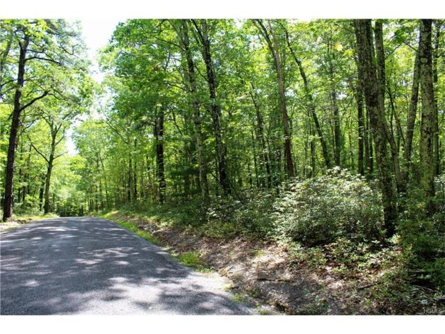 Schroon Hill Road, Rochester, NY 12446 (MLS #4741533) :: Mark Boyland Real Estate Team