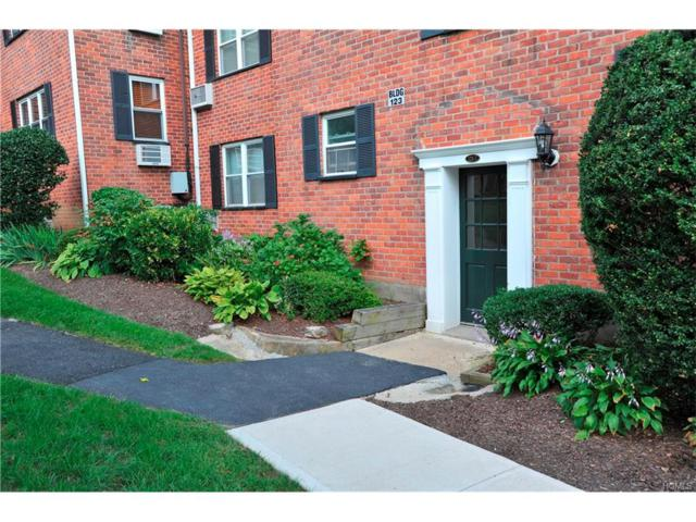 123-7 S Highland Avenue 2J, Ossining, NY 10562 (MLS #4741551) :: Mark Boyland Real Estate Team