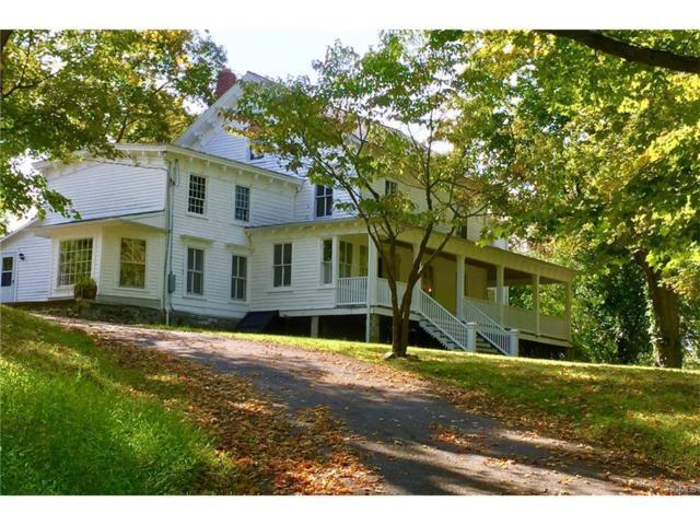 102 Mountain Lodge Road, Washingtonville, NY 10992 (MLS #4741570) :: William Raveis Baer & McIntosh
