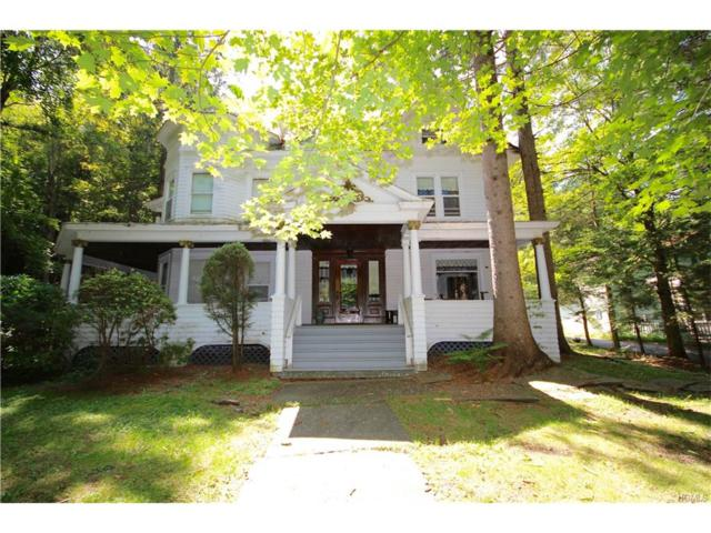 238 Ellsworth Avenue, Call Listing Agent, NY 12430 (MLS #4741627) :: Mark Boyland Real Estate Team