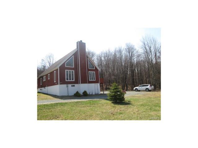 10 Schleiermacher Road, Livingston Manor, NY 12758 (MLS #4741822) :: Michael Edmond Team at Keller Williams NY Realty