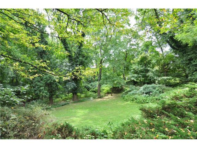 Heatherdell Road, Ardsley, NY 10502 (MLS #4742049) :: William Raveis Legends Realty Group