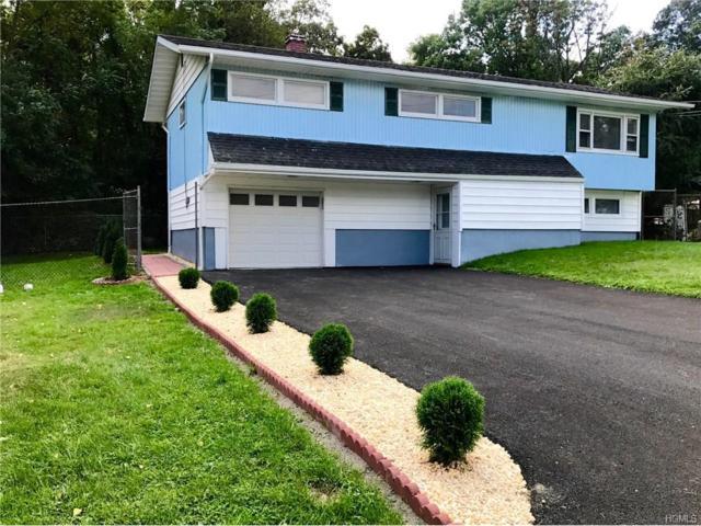 15 Haight Drive, New Windsor, NY 12553 (MLS #4742228) :: William Raveis Baer & McIntosh