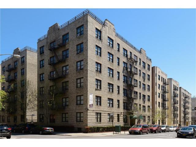 55 E 190 Street #43, Bronx, NY 10468 (MLS #4742393) :: William Raveis Legends Realty Group