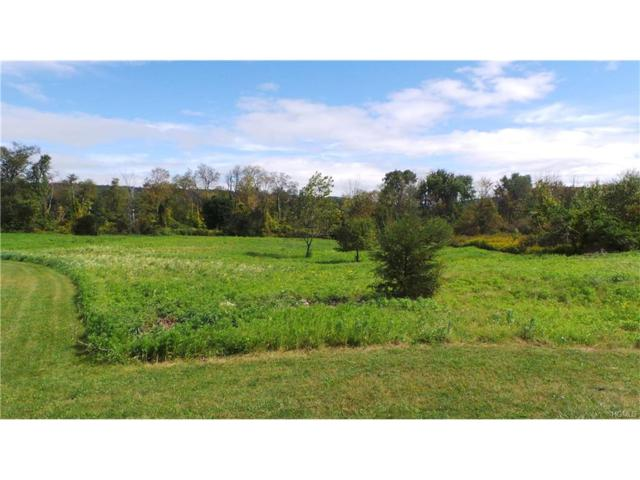 Lot 17 Country View Road, Millerton, NY 12546 (MLS #4742529) :: Michael Edmond Team at Keller Williams NY Realty