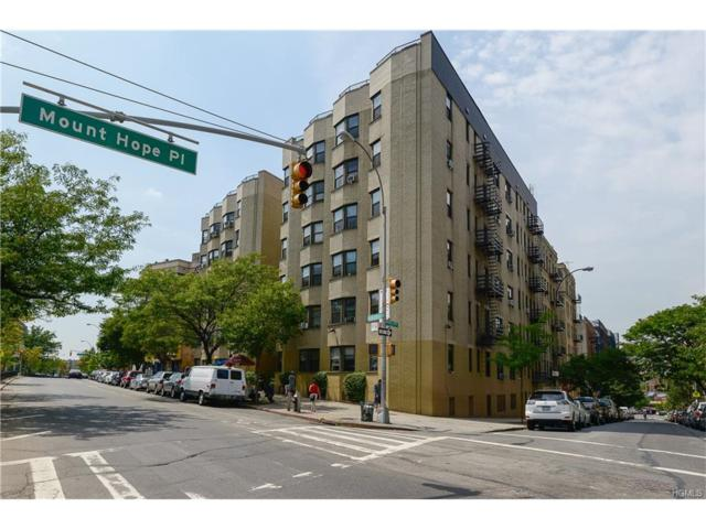 1855 Grand Concourse #55, Bronx, NY 10453 (MLS #4742590) :: Mark Boyland Real Estate Team