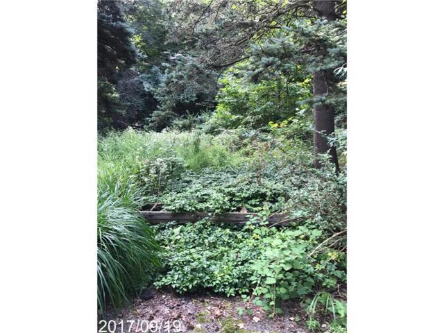 4 Mountain Road, Irvington, NY 10533 (MLS #4742800) :: William Raveis Legends Realty Group