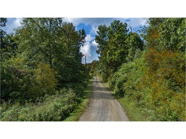 Lot 5 Cart Road, Dover Plains, NY 12522 (MLS #4742906) :: Mark Boyland Real Estate Team