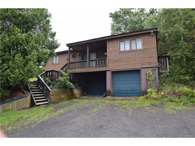 9451 Us Route 9W, Athens, NY 12015 (MLS #4743055) :: Stevens Realty Group