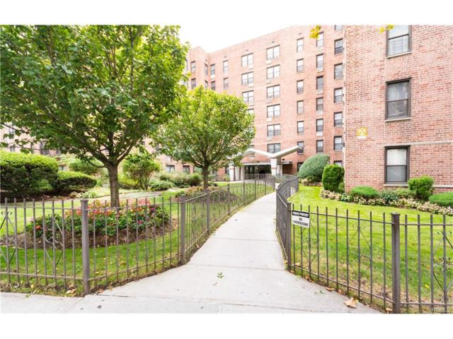 814 Tilden Avenue 5H, Bronx, NY 10467 (MLS #4743164) :: Mark Boyland Real Estate Team
