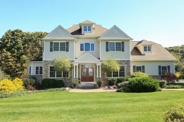 9 Saddle Ridge, Pawling, NY 12564 (MLS #4743552) :: Mark Boyland Real Estate Team