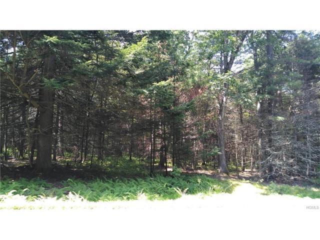 (26) Timber Lake Drive, Yulan, NY 12792 (MLS #4743721) :: Mark Boyland Real Estate Team