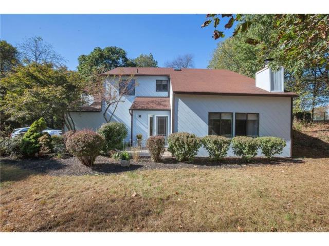9 Hopkins Terrace, Goshen, NY 10924 (MLS #4743747) :: William Raveis Baer & McIntosh