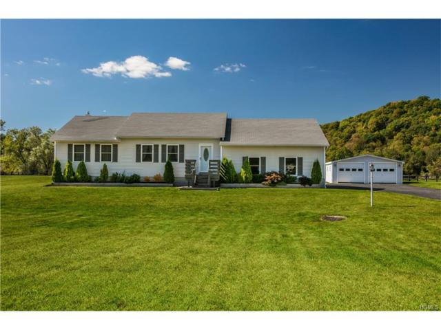 7971 Route 82, Pine Plains, NY 12567 (MLS #4744173) :: Mark Boyland Real Estate Team
