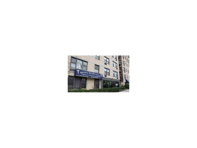 3184 Grand Concourse 3J, Bronx, NY 10458 (MLS #4744314) :: William Raveis Legends Realty Group