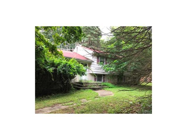 9 Ivy, Washingtonville, NY 10992 (MLS #4744699) :: William Raveis Baer & McIntosh