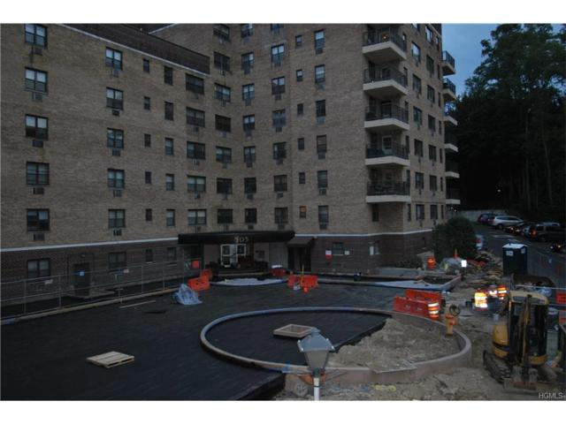 505 Central Avenue #207, White Plains, NY 10606 (MLS #4744774) :: Mark Boyland Real Estate Team