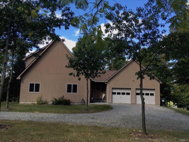 3 Reservoir Road, Goshen, NY 10924 (MLS #4745052) :: William Raveis Baer & McIntosh