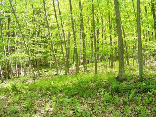 Cherry Hill, Blooming Grove, NY 10914 (MLS #4745143) :: William Raveis Baer & McIntosh