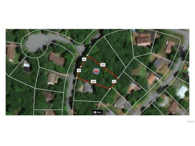 Picadilly Circle, Rock Hill, NY 12775 (MLS #4745332) :: Mark Boyland Real Estate Team