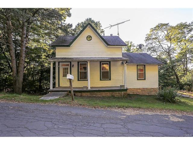 5 Collyer Avenue, Valley Cottage, NY 10989 (MLS #4745364) :: William Raveis Baer & McIntosh