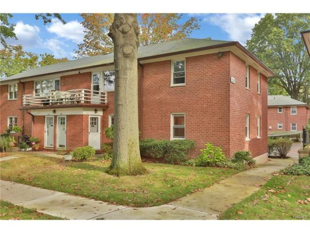 330 S Buckhout Street #330, Irvington, NY 10533 (MLS #4745371) :: William Raveis Legends Realty Group