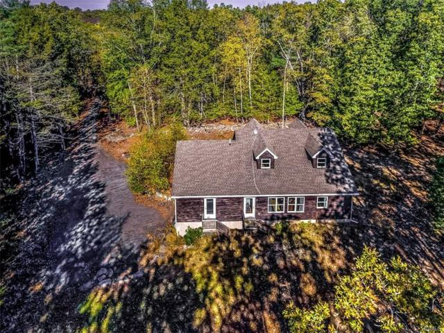 147 Beaverkill Road, Kingston, NY 12401 (MLS #4745584) :: Mark Boyland Real Estate Team