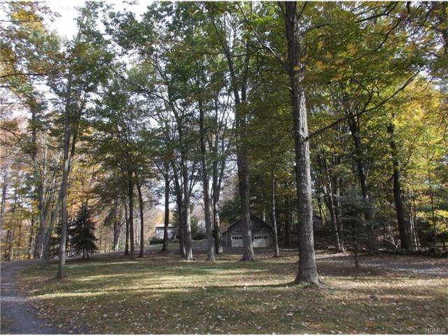 883 Laroe Road, Monroe, NY 10950 (MLS #4745740) :: William Raveis Baer & McIntosh