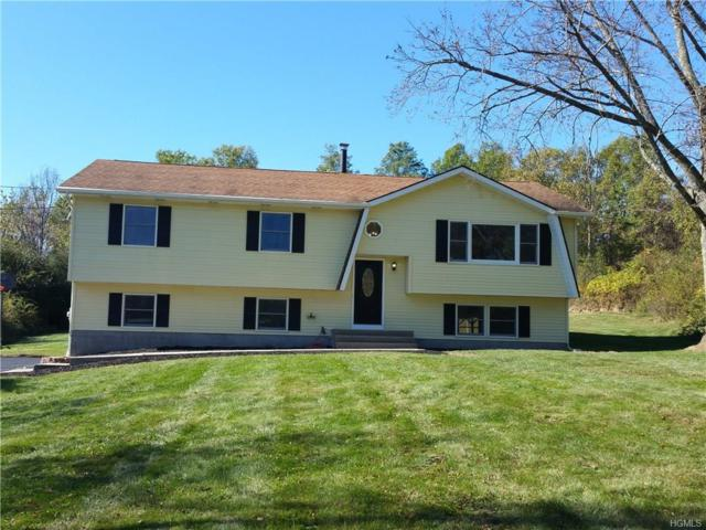 491 Toleman Road, Rock Tavern, NY 12575 (MLS #4745794) :: William Raveis Legends Realty Group