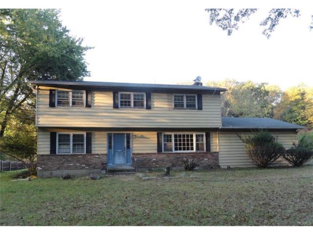 199 Woodcock Mtn Road, Washingtonville, NY 10992 (MLS #4745898) :: William Raveis Baer & McIntosh