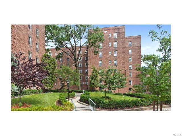 5645 Netherland Avenue 3G, Bronx, NY 10471 (MLS #4746008) :: William Raveis Legends Realty Group