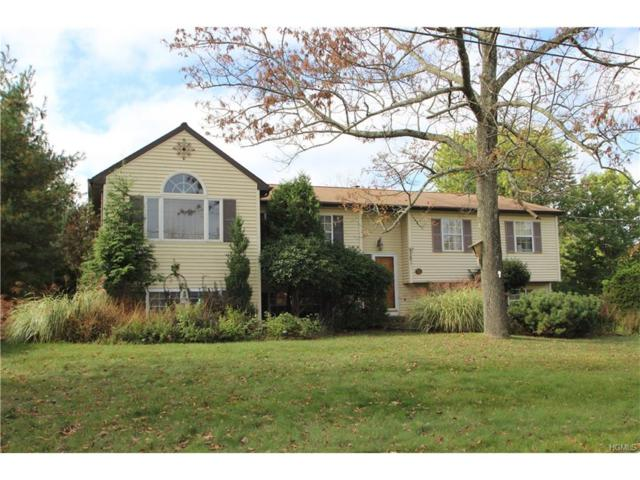 322 Mountain Avenue, Monroe, NY 10950 (MLS #4746015) :: William Raveis Baer & McIntosh