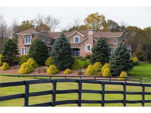 50 Tuscan Way, Clinton Corners, NY 12514 (MLS #4746208) :: Stevens Realty Group