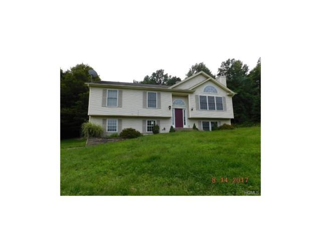 38 Ann Elizabeth Drive, Washingtonville, NY 10992 (MLS #4746238) :: William Raveis Baer & McIntosh