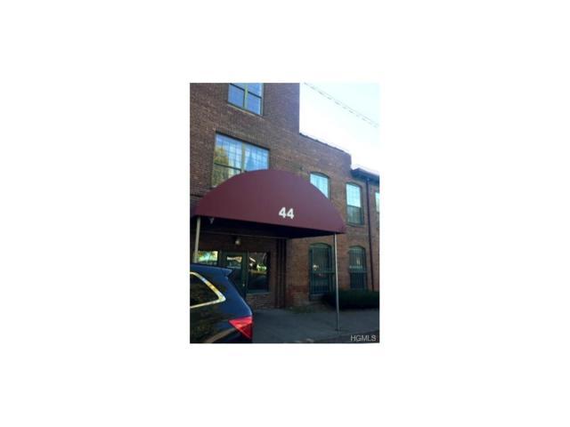 44 Johnes Street 209J, Newburgh, NY 12550 (MLS #4746261) :: William Raveis Baer & McIntosh